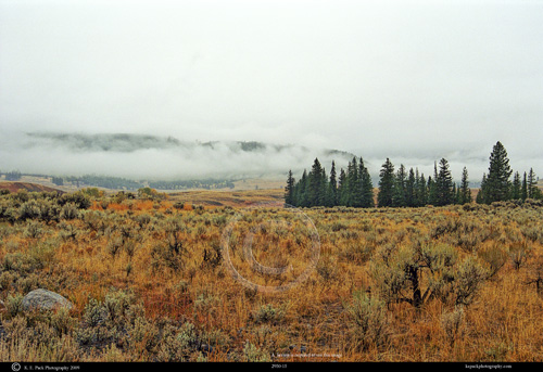 Misty Morning over Blacktail Plateau