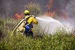 Wildfire Firefighting, Firefighter